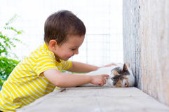 Παιχνίδι παιδιών με τη γάτα Στοκ φωτογραφία με δικαίωμα ελεύθερης χρήσης