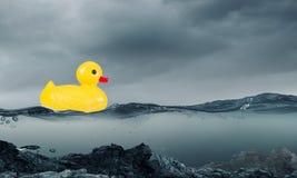 Παιχνίδι παπιών Στοκ φωτογραφία με δικαίωμα ελεύθερης χρήσης