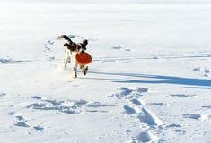 παιχνίδι πετάγματος σκυ&lambd Στοκ Εικόνες