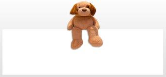 Παιχνίδι σκυλιών Teddy Στοκ Εικόνες