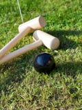 Παιχνίδι του κροκέ στον πράσινο χορτοτάπητα Στοκ Εικόνα