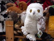 παιχνίδι χιονώδης ζωολογικός κήπος της Πράγας κουκουβαγιών Στοκ Φωτογραφίες