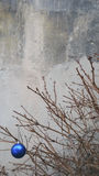 Παιχνίδι Χριστουγέννων σε έναν ξηρό κλάδο δέντρων έλατου Στοκ εικόνα με δικαίωμα ελεύθερης χρήσης