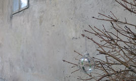 Παιχνίδι Χριστουγέννων σε έναν ξηρό κλάδο δέντρων έλατου Στοκ Εικόνες