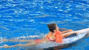 Παιδί και δελφίνια Το κορίτσι εφήβων κολυμπά με το δελφίνι διατηρώντας τα πτερύγιά του απόθεμα βίντεο