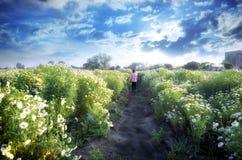 παιδί κοριτσιών που περπατά στους τομείς λουλουδιών Στοκ Φωτογραφία