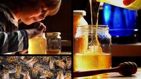 Παιδί, μέλι, μέλισσες απόθεμα βίντεο