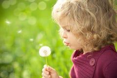 Παιδί με την πικραλίδα Στοκ Φωτογραφίες