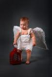 Παιδί μωρών στο άσπρο φόρεμα με τα φτερά αγγέλου με το κόκκινο φως Στοκ Εικόνα