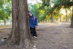 Παιδί που κλίνει σε ένα δέντρο στο δάσος Στοκ Εικόνες