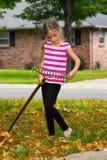Παιδί που μαζεύει με τη τσουγκράνα τα φύλλα Στοκ Εικόνες