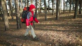 Παιδί που περπατά στην περιπέτεια στα ίχνη βουνών, πορείες, που με το σακίδιο πλάτης, οδοιπόροι που στο δάσος, που απολαμβάνει τη απόθεμα βίντεο