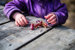 Παιδί που τρώει τα σταφύλια Στοκ Εικόνες