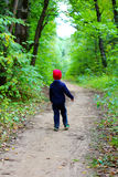Παιδί στα ξύλα Στοκ Φωτογραφίες