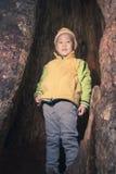 Παιδί στην τρύπα δέντρων Στοκ εικόνα με δικαίωμα ελεύθερης χρήσης