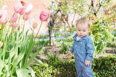 παιδί 11 φθινοπώρου Στοκ εικόνα με δικαίωμα ελεύθερης χρήσης