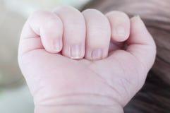 Παιδί, χέρι νεογέννητου Χέρια του πατέρα και του γιου που ενώνονται Maternit Στοκ Εικόνες