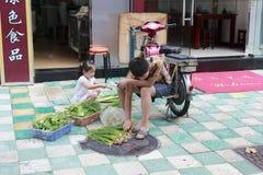 Παιδιά αρχιμαγείρων που επιλέγουν τα λαχανικά Στοκ φωτογραφία με δικαίωμα ελεύθερης χρήσης