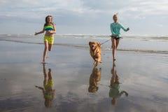 Παιδιά και σκυλί που τρέχουν στην παραλία στοκ εικόνα