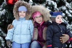 Παιδιά με το χριστουγεννιάτικο δέντρο στοκ φωτογραφίες με δικαίωμα ελεύθερης χρήσης