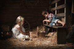 Παιδιά που παίζουν με τα γατάκια Στοκ φωτογραφία με δικαίωμα ελεύθερης χρήσης