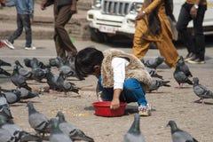 Παιδιά που παίζουν στην πλατεία Durbar στο Κατμαντού Στοκ εικόνες με δικαίωμα ελεύθερης χρήσης
