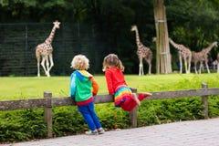 Παιδιά που προσέχουν giraffe στο ζωολογικό κήπο Στοκ Φωτογραφίες