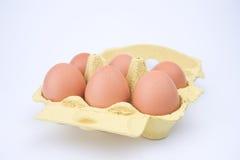 Πακέτο αυγών Chiken Στοκ Εικόνα