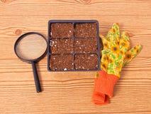 Πακέτο κυττάρων με τα Floral γάντια και την ενίσχυση - γυαλί Στοκ εικόνες με δικαίωμα ελεύθερης χρήσης
