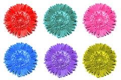Πακέτο της χρωματισμένης μακροεντολής λουλουδιών φαντασίας που απομονώνεται Στοκ εικόνες με δικαίωμα ελεύθερης χρήσης