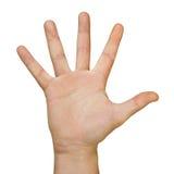παλάμη χεριών Στοκ φωτογραφίες με δικαίωμα ελεύθερης χρήσης