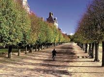 παλάτι Παρίσι της Γαλλίας fontainebleu Στοκ Φωτογραφίες