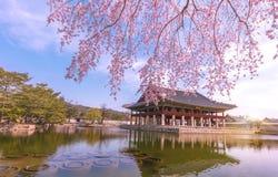 Παλάτι Σεούλ, Νότια Κορέα Gyeongbokgung στοκ εικόνα με δικαίωμα ελεύθερης χρήσης