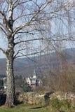 παλάτι σημύδων Στοκ Εικόνες