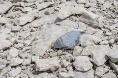 Παλαιά ακτή λιμνών ρύπανσης τσαντών παντοπωλείων στοκ φωτογραφίες