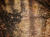 Παλαιά ανασκόπηση πετρών. στοκ φωτογραφίες