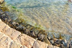 Παλαιά αρχαία κίτρινα βήματα πετρών που καλύπτονται με την πράσινη λάσπη και τη λάσπη, κάθοδος στη θάλασσα, λίμνη, ωκεανός και θα στοκ εικόνα