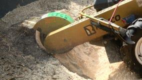Παλαιά αφαίρεση κολοβωμάτων δέντρων φιλμ μικρού μήκους