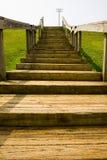παλαιά βήματα πάρκων Στοκ Φωτογραφίες