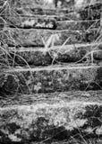 Παλαιά βήματα πετρών - γραπτά Στοκ Φωτογραφία