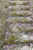 Παλαιά βήματα πετρών Στοκ Εικόνες