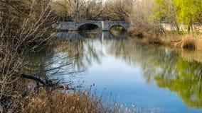 Παλαιά γέφυρα πετρών στην πόλη Palencia, Ισπανία στοκ φωτογραφίες με δικαίωμα ελεύθερης χρήσης