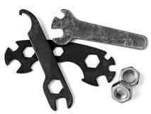 παλαιά γαλλικά κλειδιά Στοκ Εικόνα