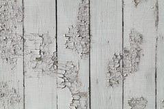 Παλαιά γκρίζα χαρτόνια Στοκ Εικόνες
