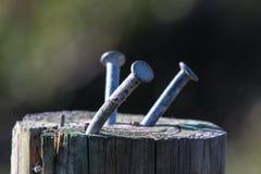 Παλαιά καρφιά στην ξύλινη θέση στοκ εικόνα με δικαίωμα ελεύθερης χρήσης