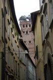 Παλαιά κτήρια Lucca με το διάσημο πύργο Guinigi στο υπόβαθρο Στοκ εικόνα με δικαίωμα ελεύθερης χρήσης