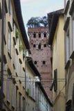 Παλαιά κτήρια Lucca με το διάσημο πύργο Guinigi στο υπόβαθρο Στοκ Φωτογραφία