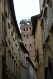 Παλαιά κτήρια Lucca με το διάσημο πύργο Guinigi Στοκ Εικόνες