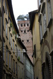 Παλαιά κτήρια Lucca με το διάσημο πύργο Guinigi Στοκ φωτογραφία με δικαίωμα ελεύθερης χρήσης