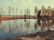 Παλαιά λίμνη Στοκ Φωτογραφία